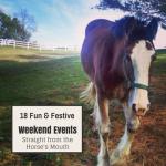 18 Fun & Festive Weekend Events